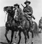 Australian Light Horse and walers in the desert campaign.